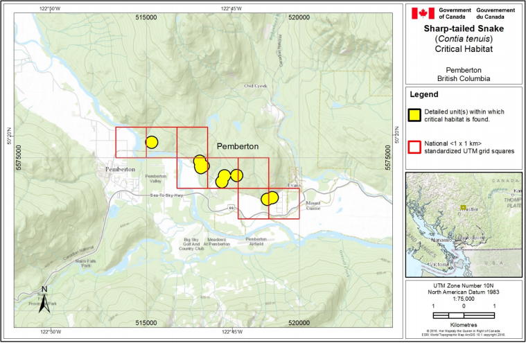 Source: Government of Canada / Recovery Strategy for the Sharp-tailed Snake (Contia tenuis) in Canada (Proposed).